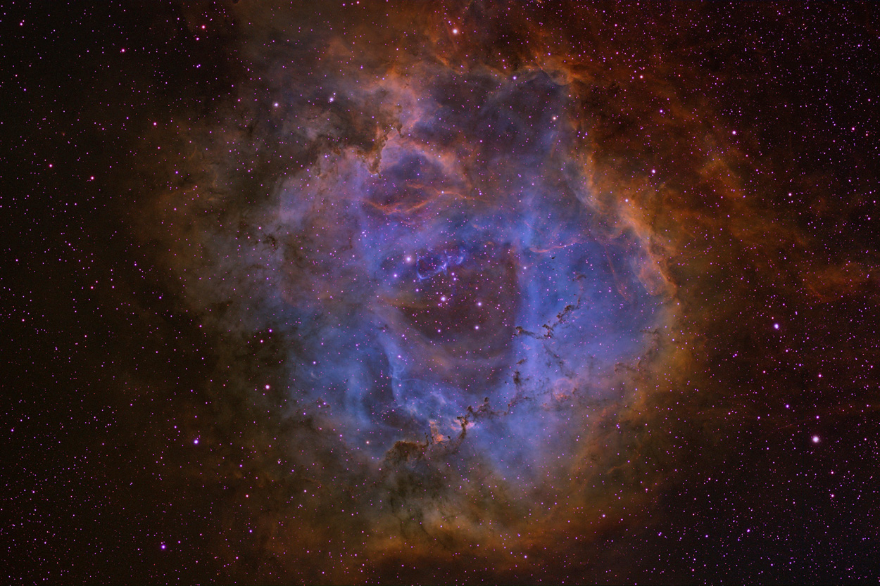 NGC 2244 and Rosette Nebula - Narrowband Color